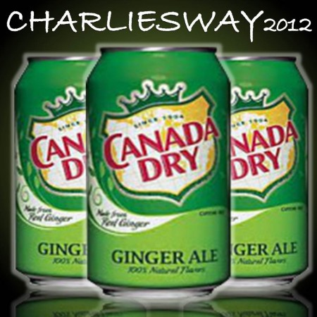 3 x LATTINE DI CANADA DRY GINGER ALE DA 355 ML MADE IN USA AMERICA BUONISSIMA