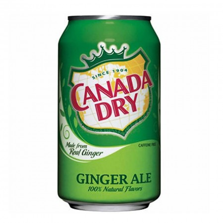 CANADA DRY GINGER ALE DA 355 ML MADE IN USA